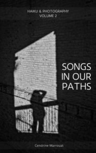 Book cover - Songs in our paths